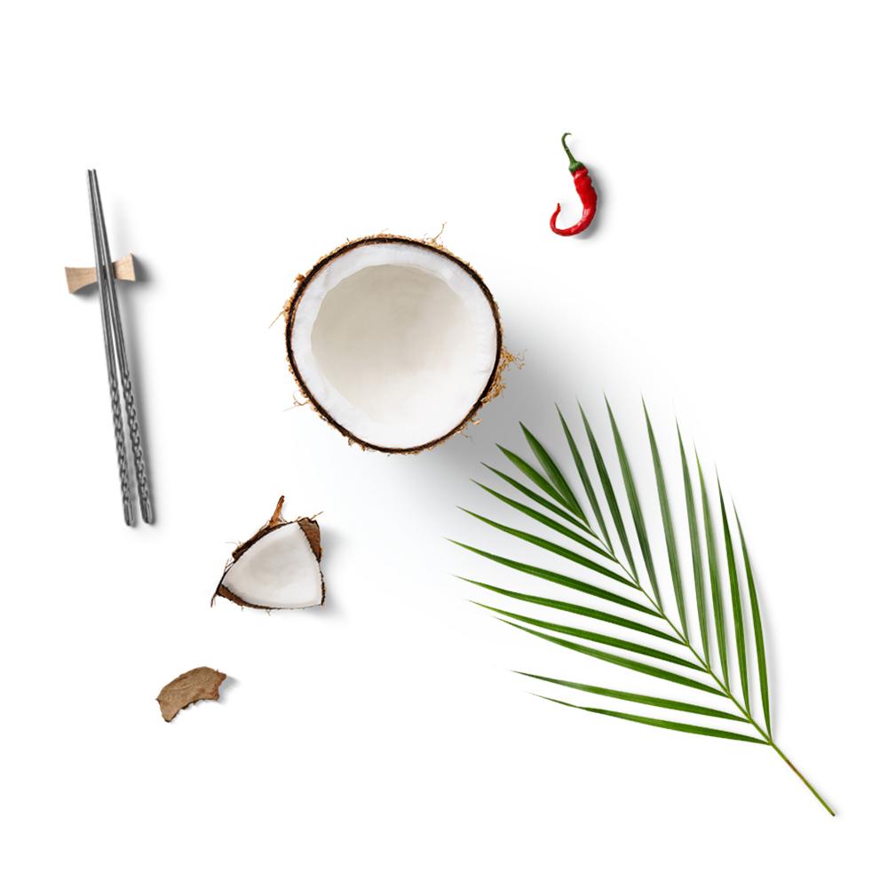 Asiatische Küche Konserven Kokosmilch