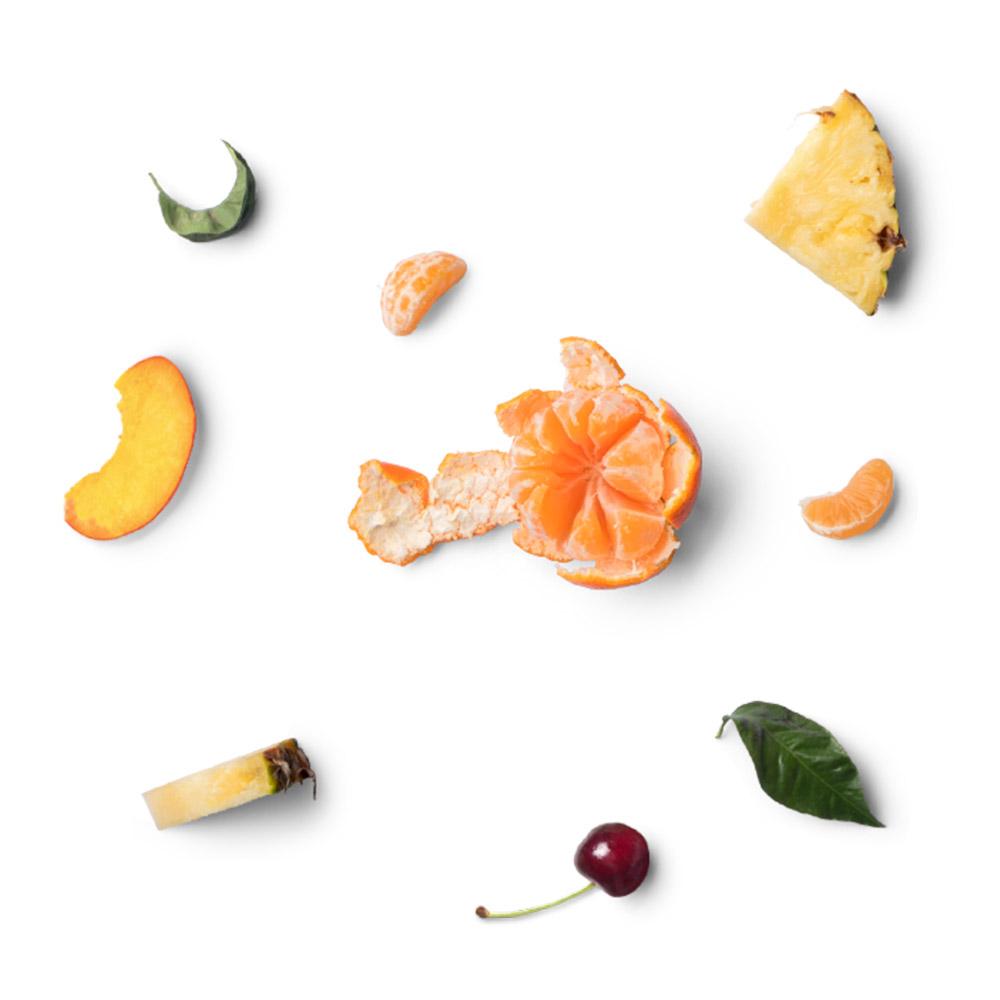 Konserven Obst Ananas Mandarine Orange Pfirsich Aprikose Kirsche